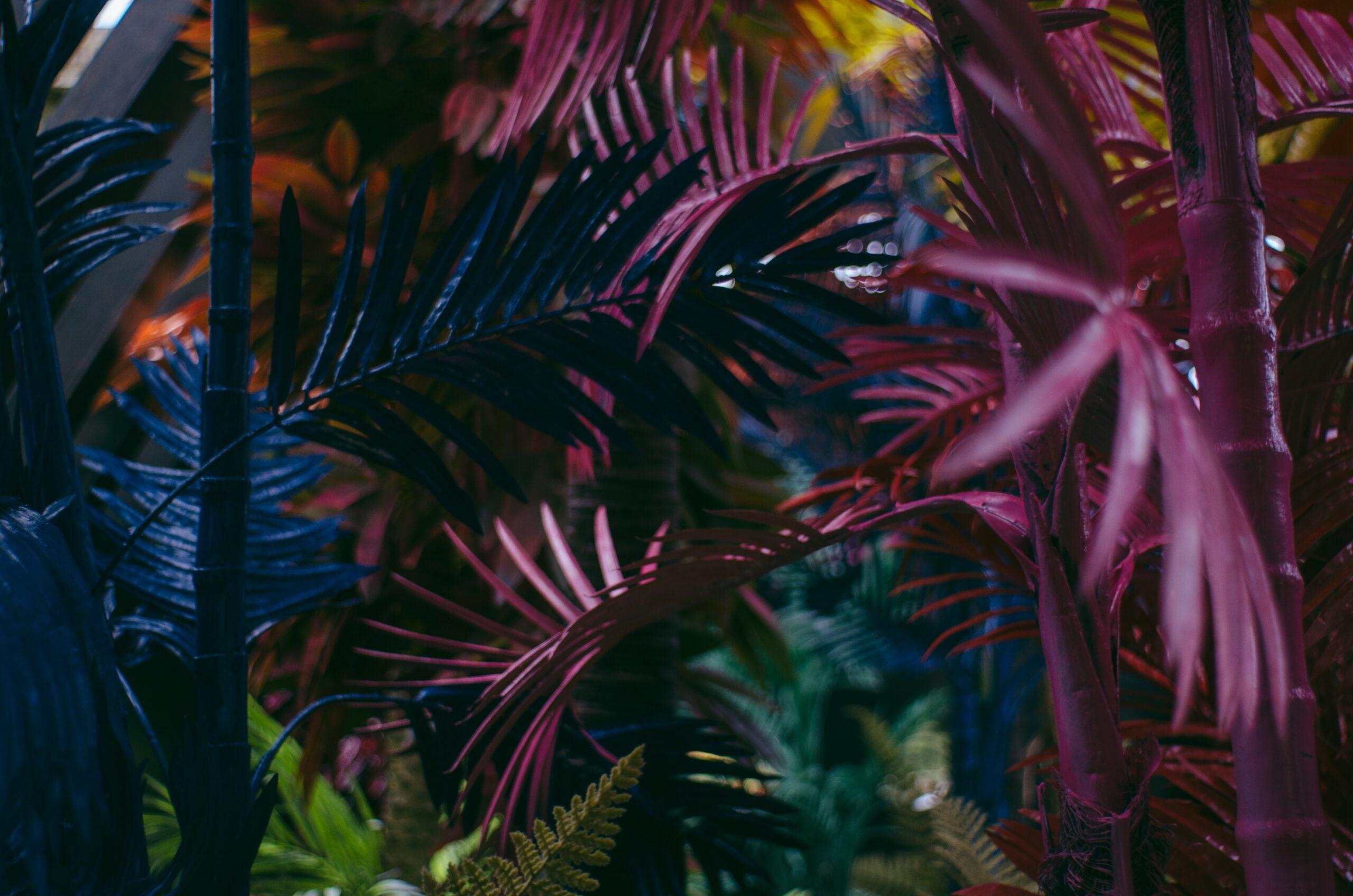 digital art plants